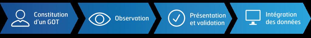 Constitution d'un GOT > Observation > Présentation et validation > Intégration des données